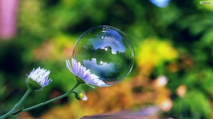 bubble-flower
